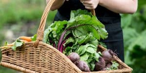 Beetroots in a basket